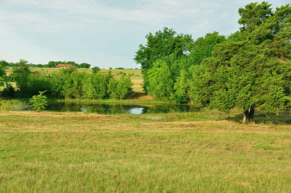 104.08 Acres – Hilltop meadow – 2 sides county road – Lamar County – SW of Paris – $225,000