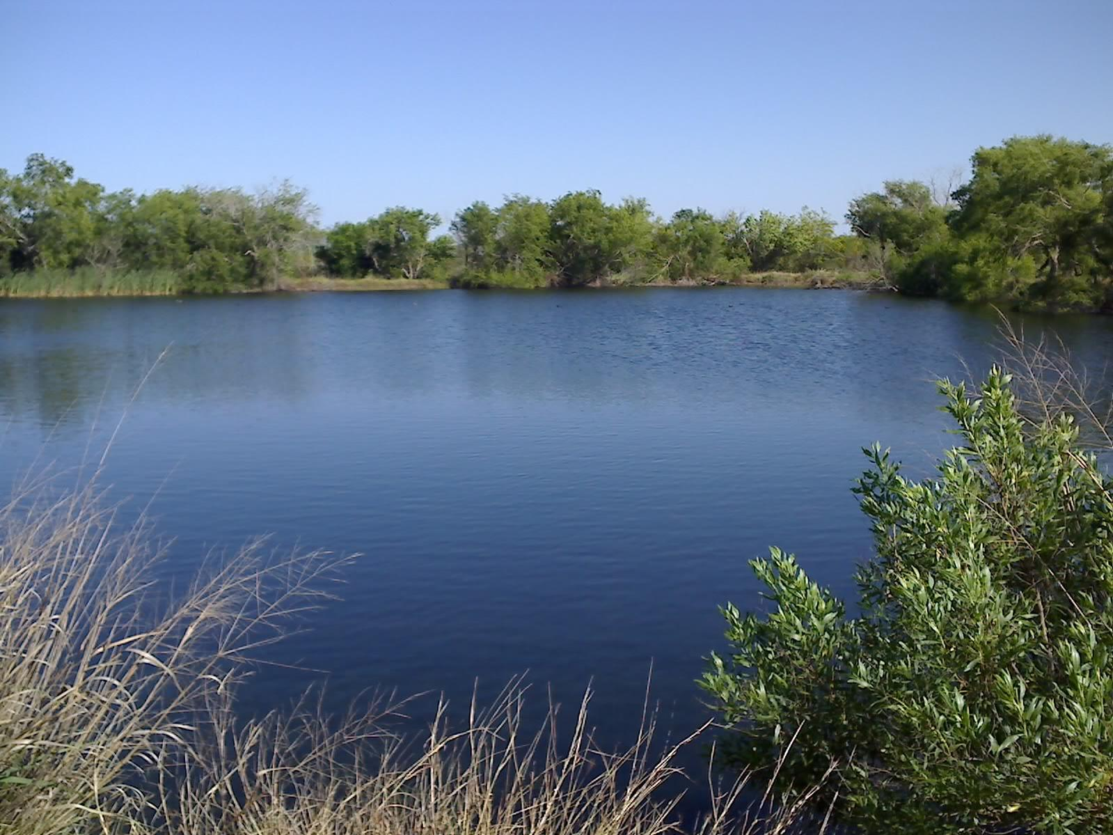 Managing your texas fishing lake for Fishing lakes in texas