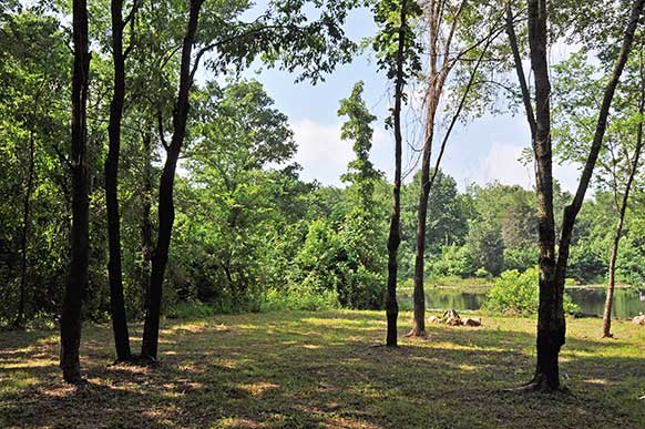 East Texas Land - Rural Acreage For Sale - Recreational
