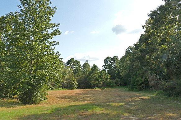 East Texas Land - Rural Acreage For Sale - Recreational